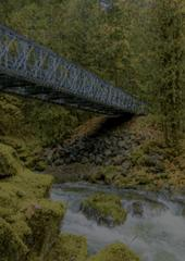 Autumnal River: Hoh River