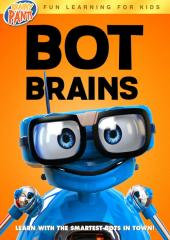 Bot Brains