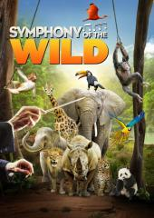 Symphony of the Wild