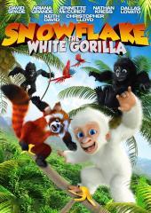 Snowflake, White Gorilla