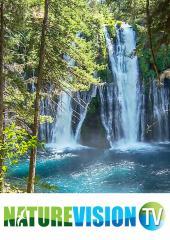 West Coast Waterfalls