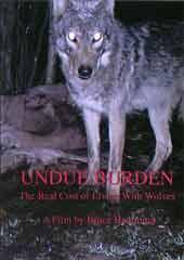 Undue Burden