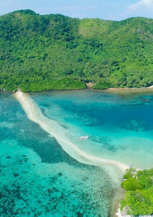 Snake Island: Philippines