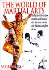 The World Of Martial Arts Part 3