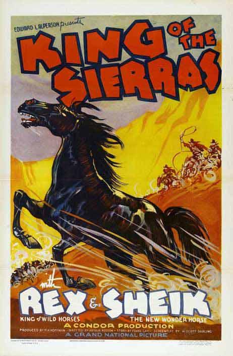 Black Stallion (aka King of the Sierras)
