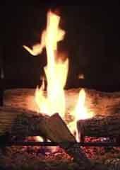 Fireplace 16 - Living Fireplace 16